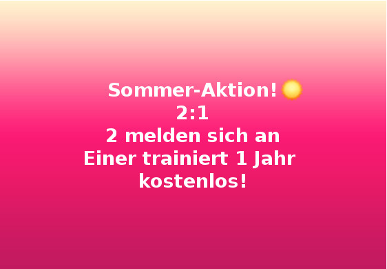 Sommer Aktion 2:1